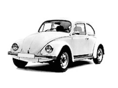 Main old beetle